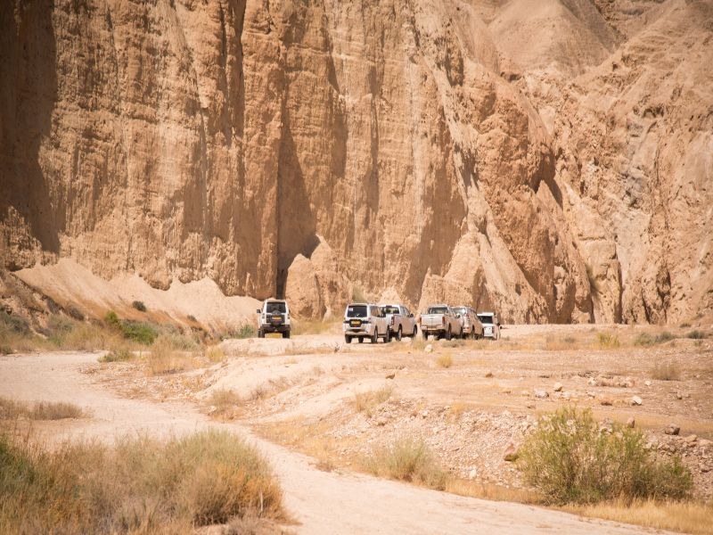 Judean Desert Safari Jeep Experience and the Dead Sea Tour